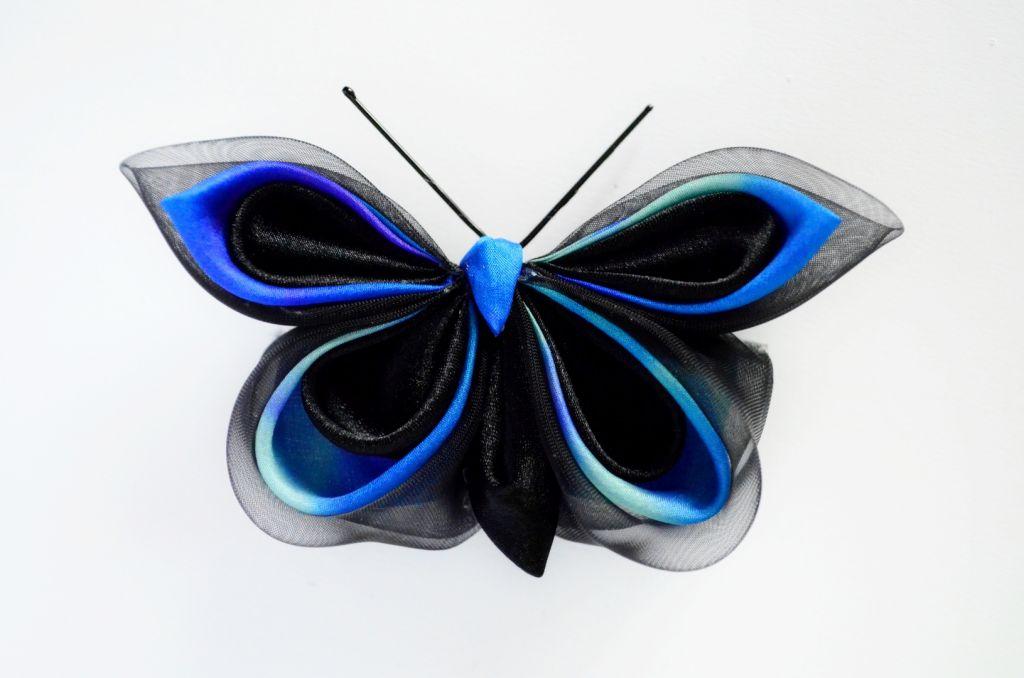 Fluture negru albastru