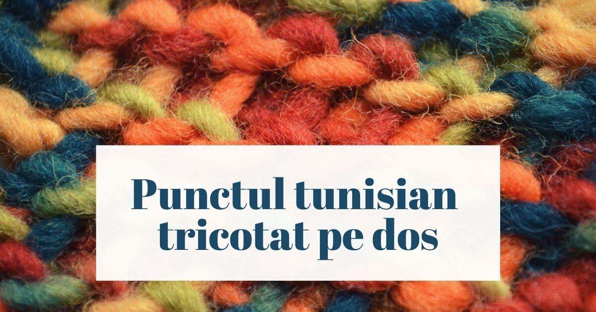 Cover photo punctul tunisian tricotat pe dos