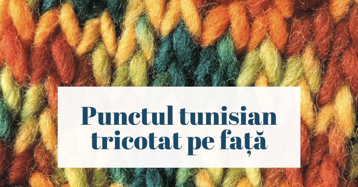 Cover punctul tunisian tricotat pe fata